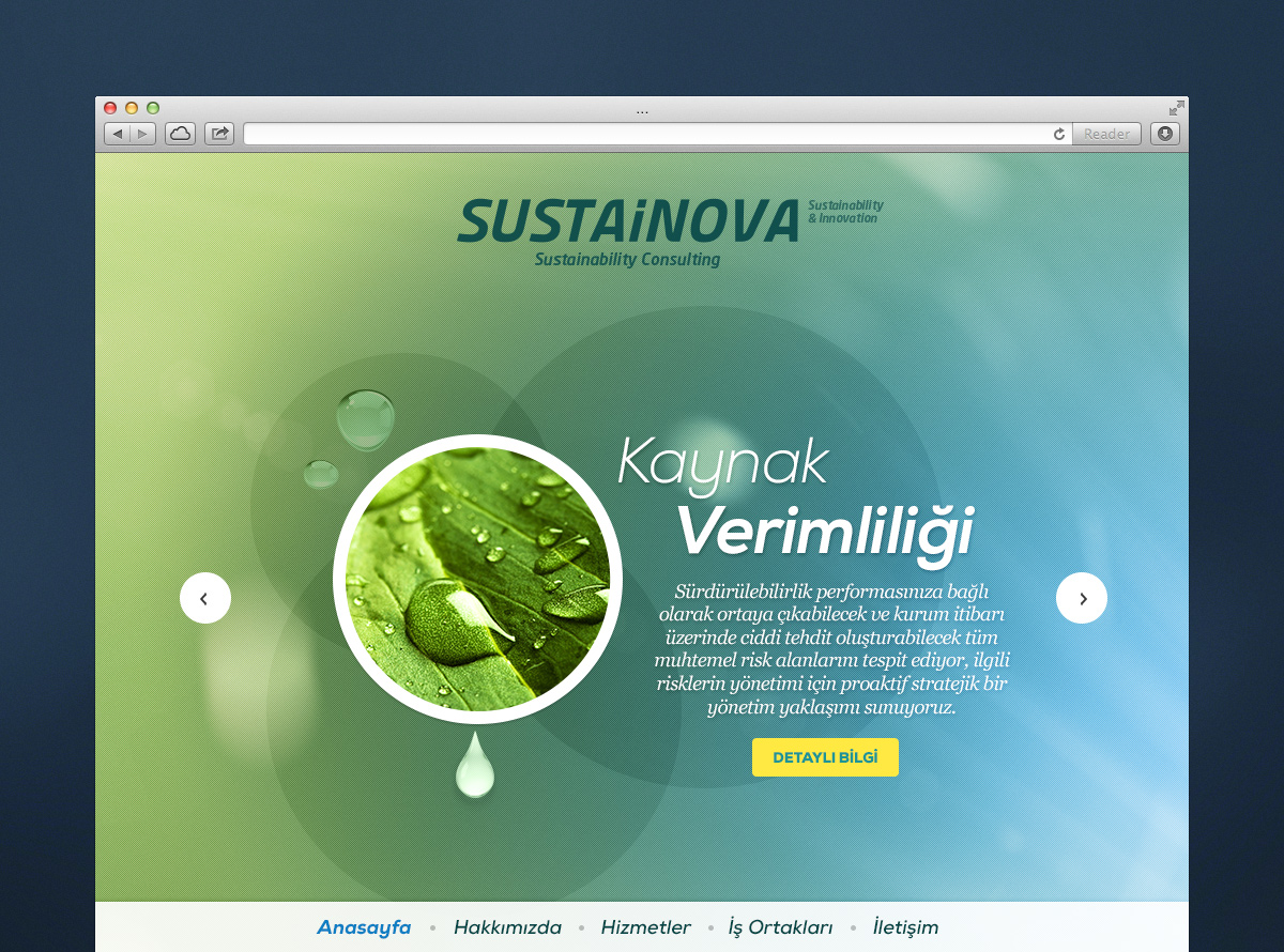 Web Design for Sustainova
